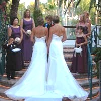 gay wedding gowns-bluefly