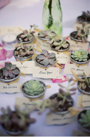 Escort Card Plants