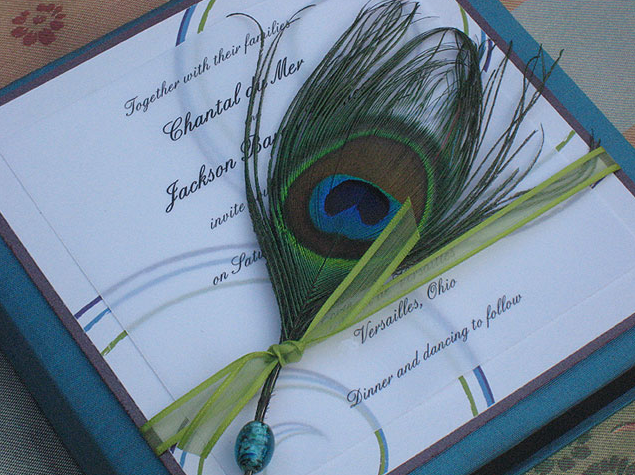 Chocolate Teal Peacock Wedding photo 3413712-4
