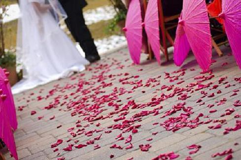 rose petal wedding aisle