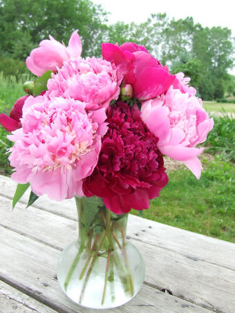 Wedding Blogs Pink And Red Inspiration