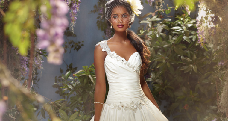 Princess Tiana wedding dress