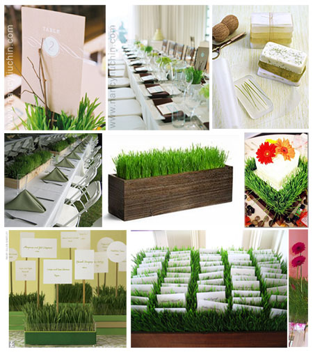 wheat grass wedding details