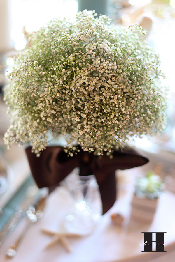 wedding with baby's breath