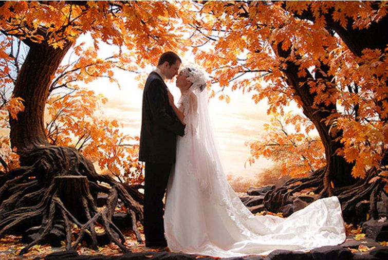 Wedding seasons fall weddings take center stage fall weddings take center stage junglespirit Choice Image