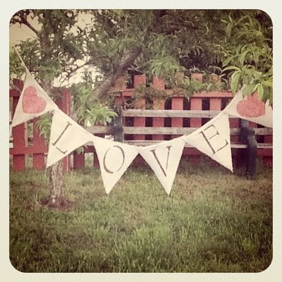 diy bunting flag banner Photo Credit Mrs Apple Cider on WeddingBeecom