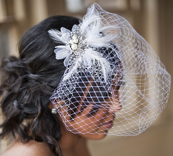 bird cage wedding veil