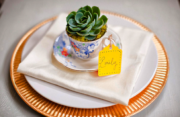 plant teacup wedding favors