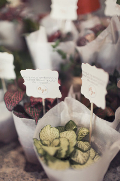 planted wedding favors