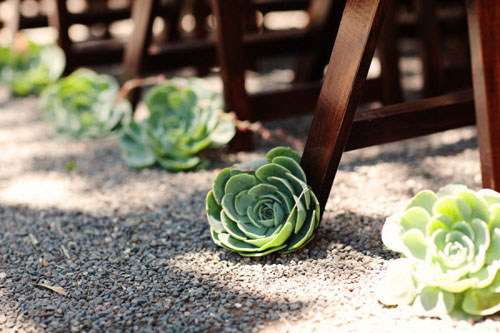 succulent wedding aisle decor