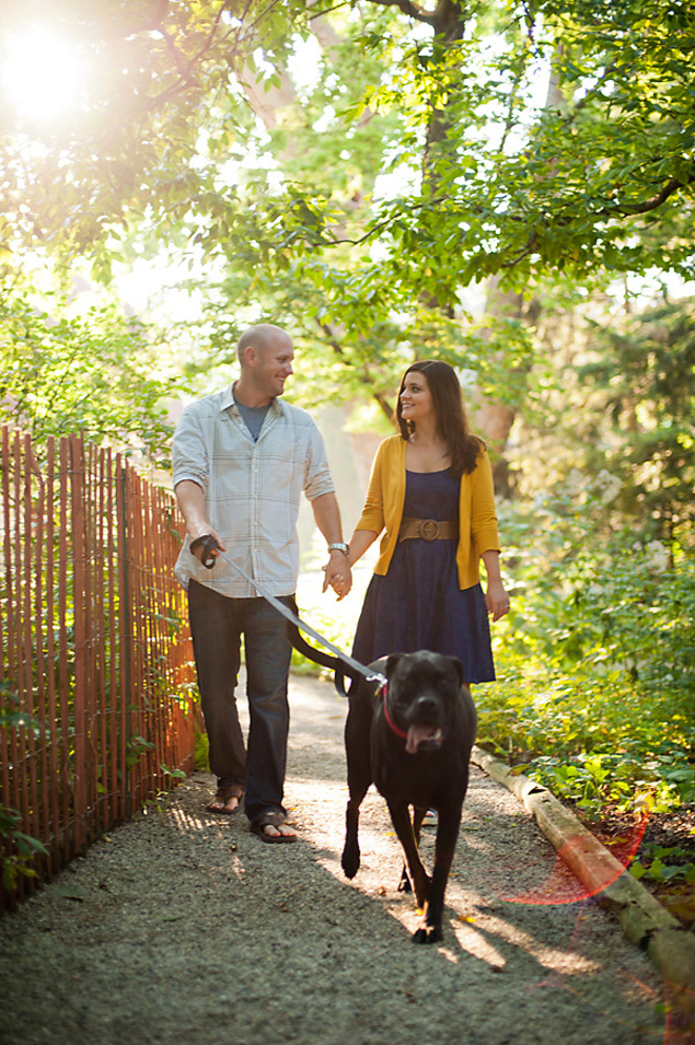 Dog Engagement Pictures