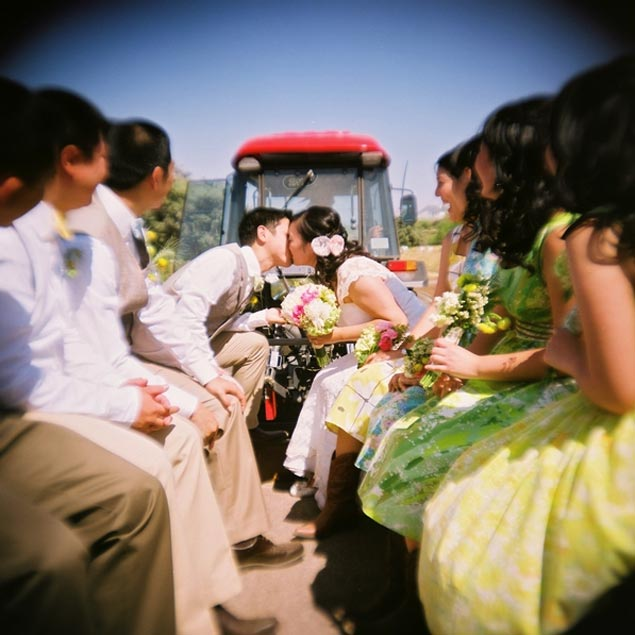 Cute Wedding Party Pictures