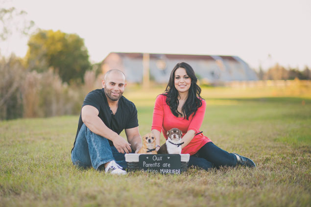 Engagement Photo Shoot with dogs