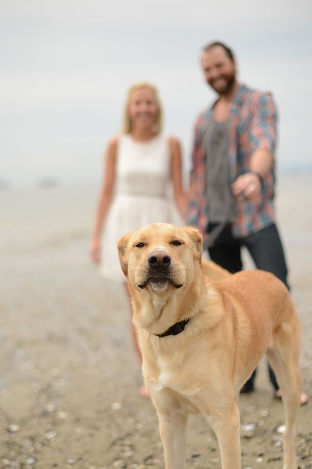 Dog in Engagement Shoot