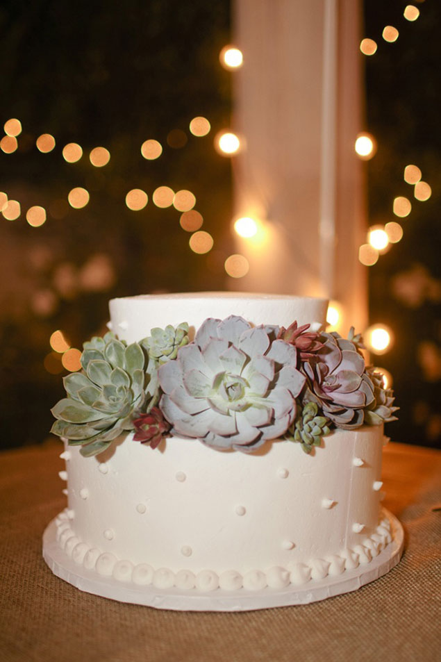 Succulent Wedding Cakes