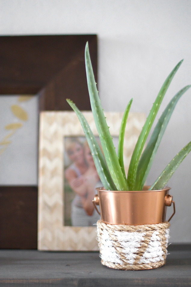 DIY Copper Planters