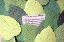 Plantable Favors