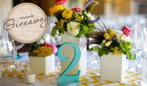 Wedding Table Number Giveaway